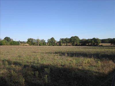 Terrain, 45 600 m²