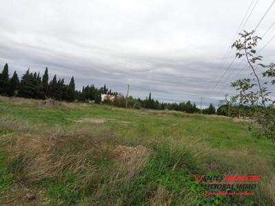 Terrain, 5 000 m²