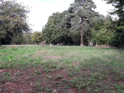 Terrain, 630 m²