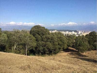 Terrain, 1 365 m²