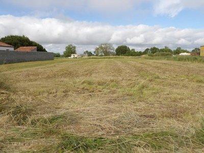 Terrain, 6 236 m²