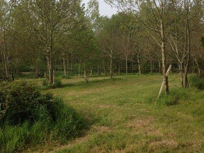 Achat Terrain Non Constructible En Bretagne Superimmo