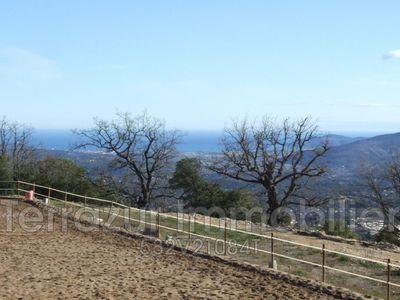 Terrain, 10 000 m²
