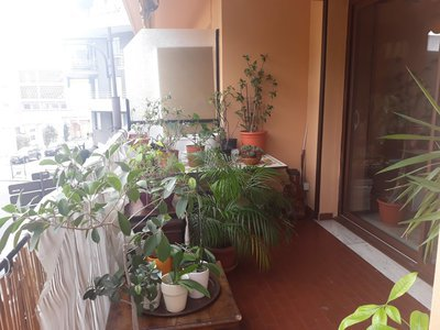Appartement, 71,76 m²