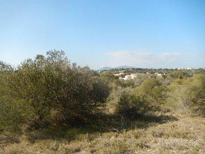 Terrain, 1 700 m²