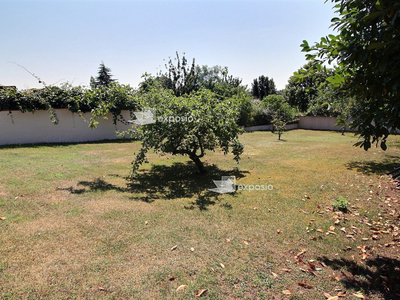 Terrain, 541 m²