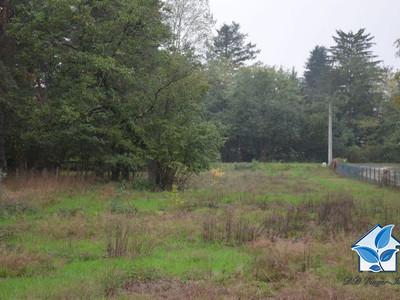 Terrain, 6 200 m²