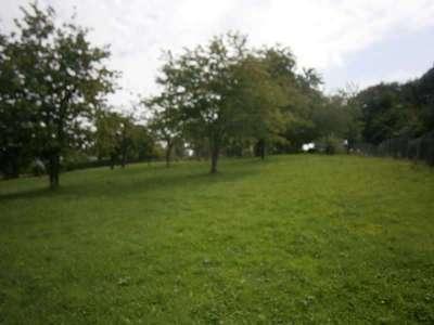 Terrain, 1 290 m²