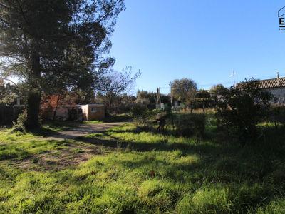Terrain, 3 423 m²
