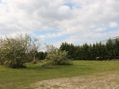 Terrain à bâtir, 1 142 m²