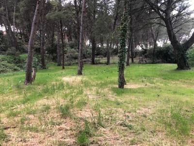 Terrain à bâtir, 1 200 m²