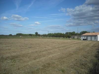 Terrain à bâtir, 1 505 m²