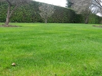Terrain à bâtir, 260 m²