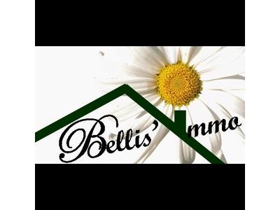 bellis-immo-transactions-sarl