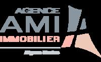 Agence AMI