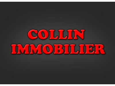collin-immobilier-2