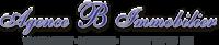 Agence B