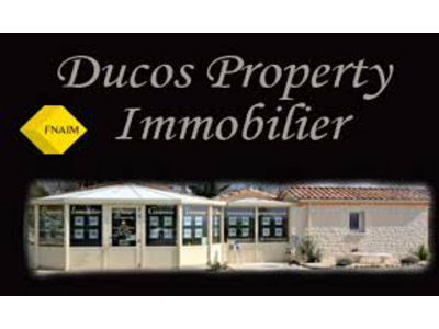 ducos-property-immobilier