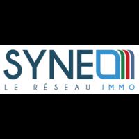 Syneo - Cogestim