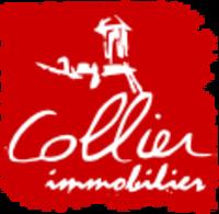 REGIE COLLIER IMMOBILIER - REGIE COLLIER IMMOBILIER PARAY-LE-MONIAL