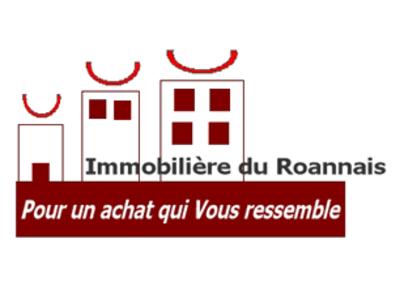 Immobiliere Du Roannais Roanne 42300 11 Place Verdun Superimmo