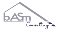 B.A.S.M. CONSULTING